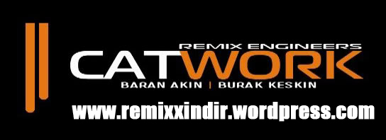 catwork-remix-engineers